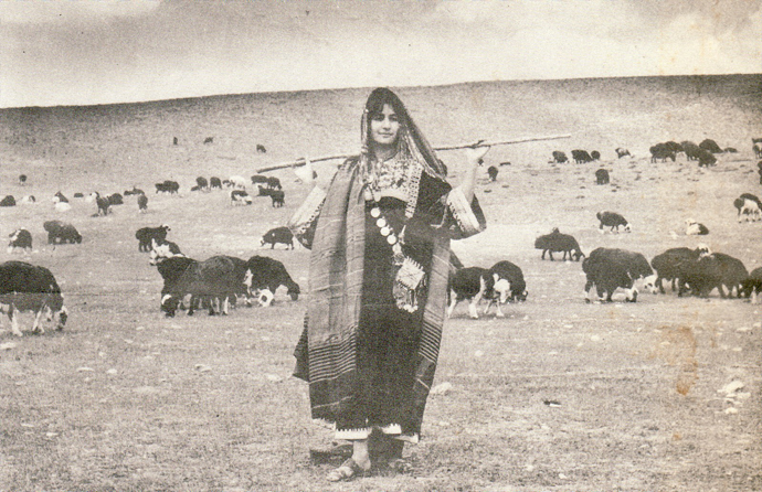 <p>Fig. 2: A young nomad woman grazing her flock of sheep. <br />Courtesy of Afghan Student News and Jennifer Heath, 1966.</p>