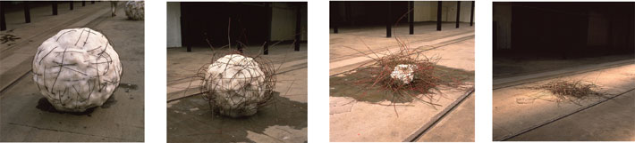 <p>Andy Goldsworthy:<em>&nbsp;Snowballs in Summer/Glasgow/Dogwood</em></p>