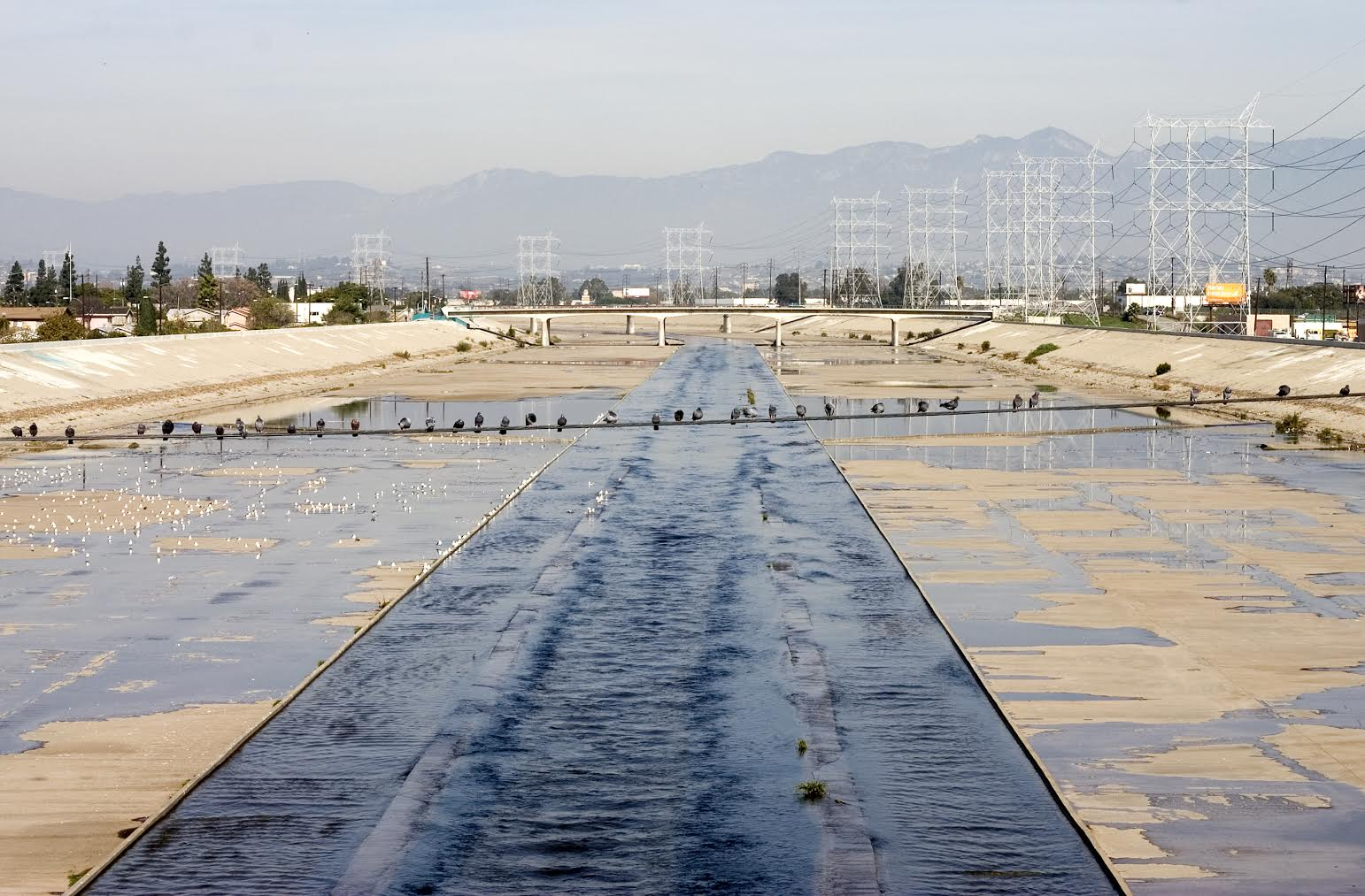 <p>Los Angeles River</p>